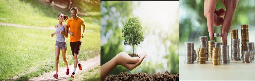 Um olhar holístico – Seis Recursos que geram Bem-estar